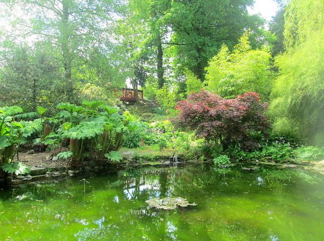 Japanese Bridge + Pond