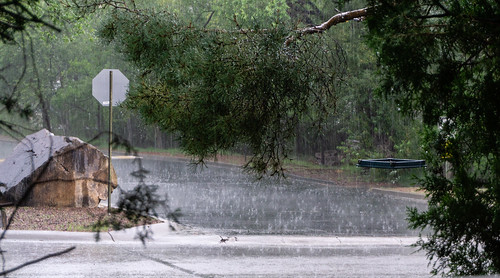 torrential_rain_20180812_100