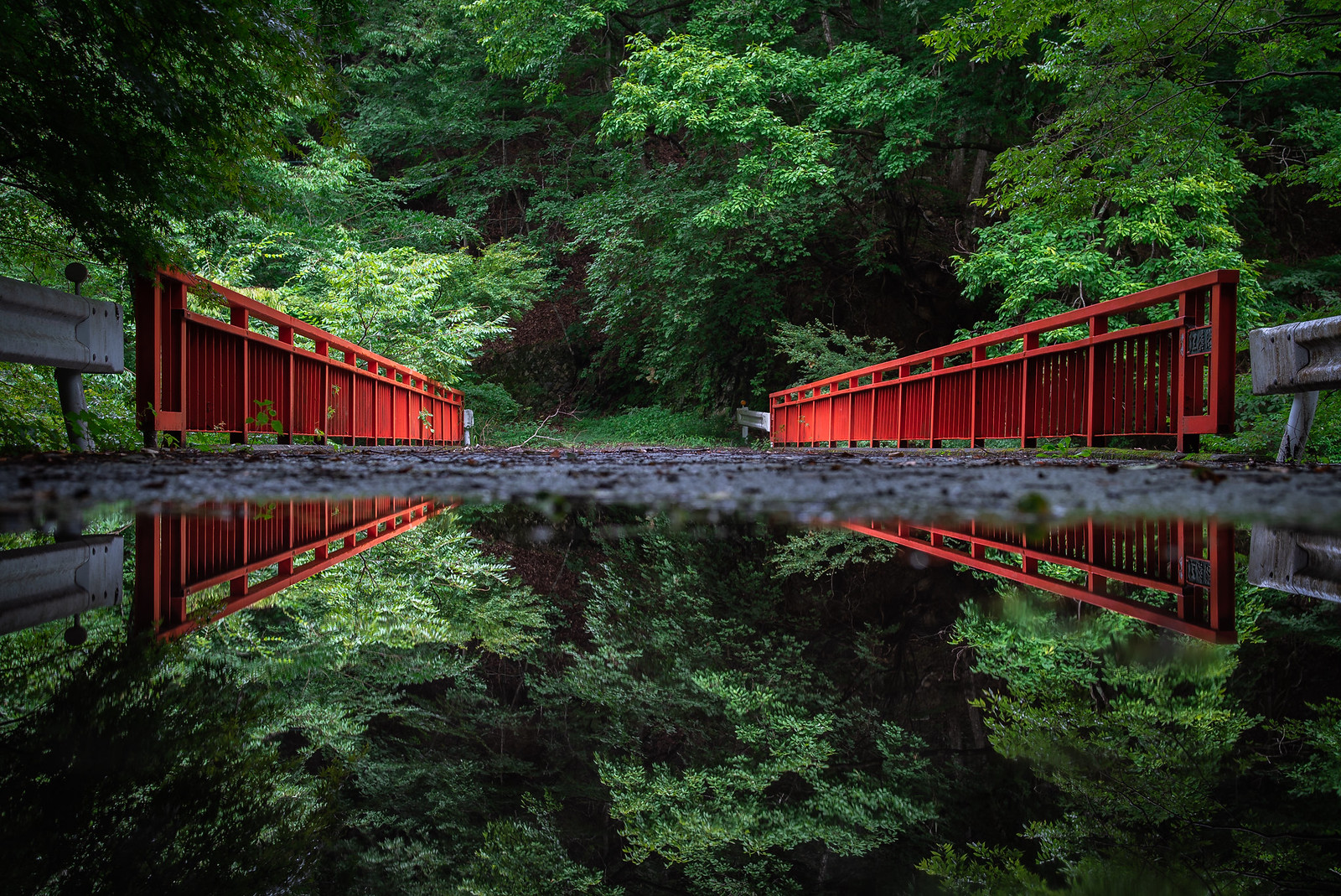 """Momiji"" bridge"