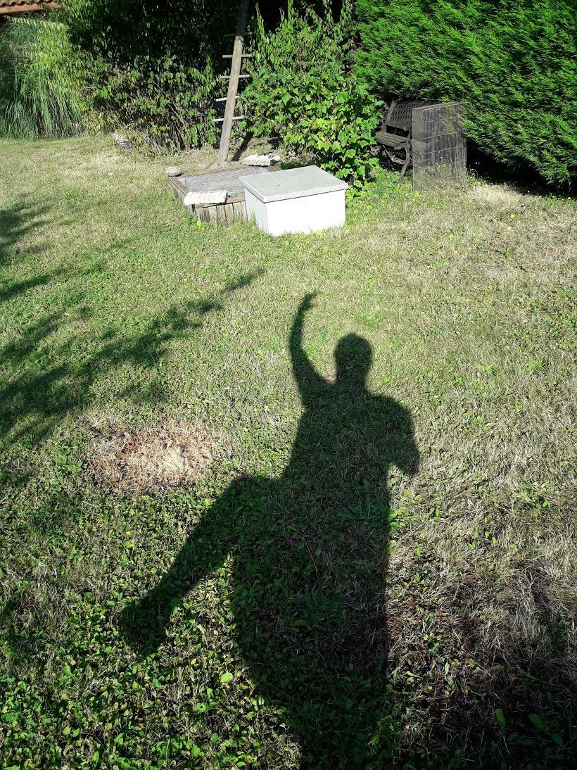 ombre danse