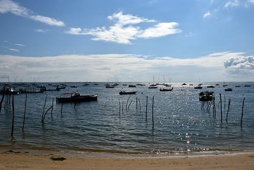 Une Journée au Cap Ferret