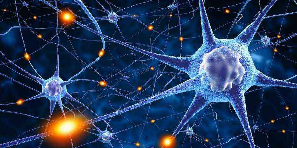 Parkinson : La protéine chaperon impliquée dans cette maladie