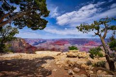 Grand Canyon View S. Rim
