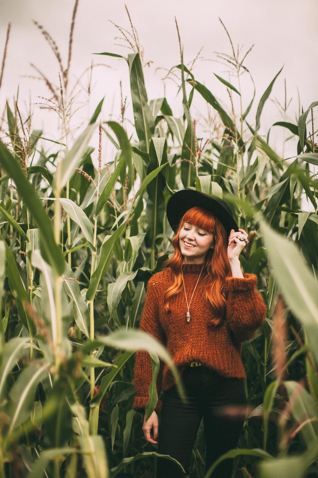 corn field-33