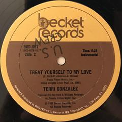 TERRI GONZALEZ:TREAT YOURSELF TO MY LOVE(LABEL SIDE-B)