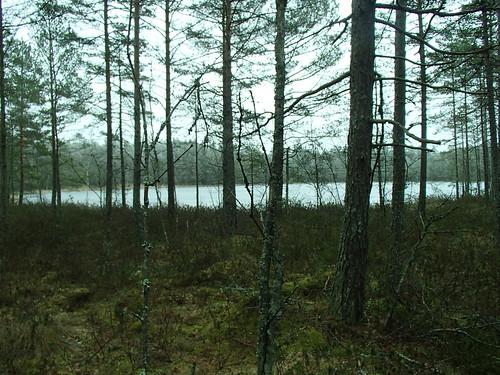 SÖ E16 Bredsjön1