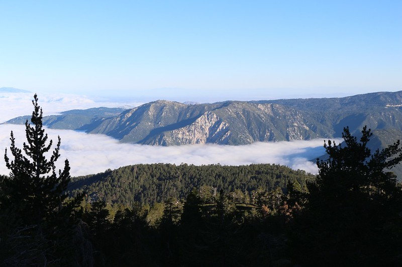 View north toward Lookout Point with the marine layer down below, from the San Bernardino Peak Trail