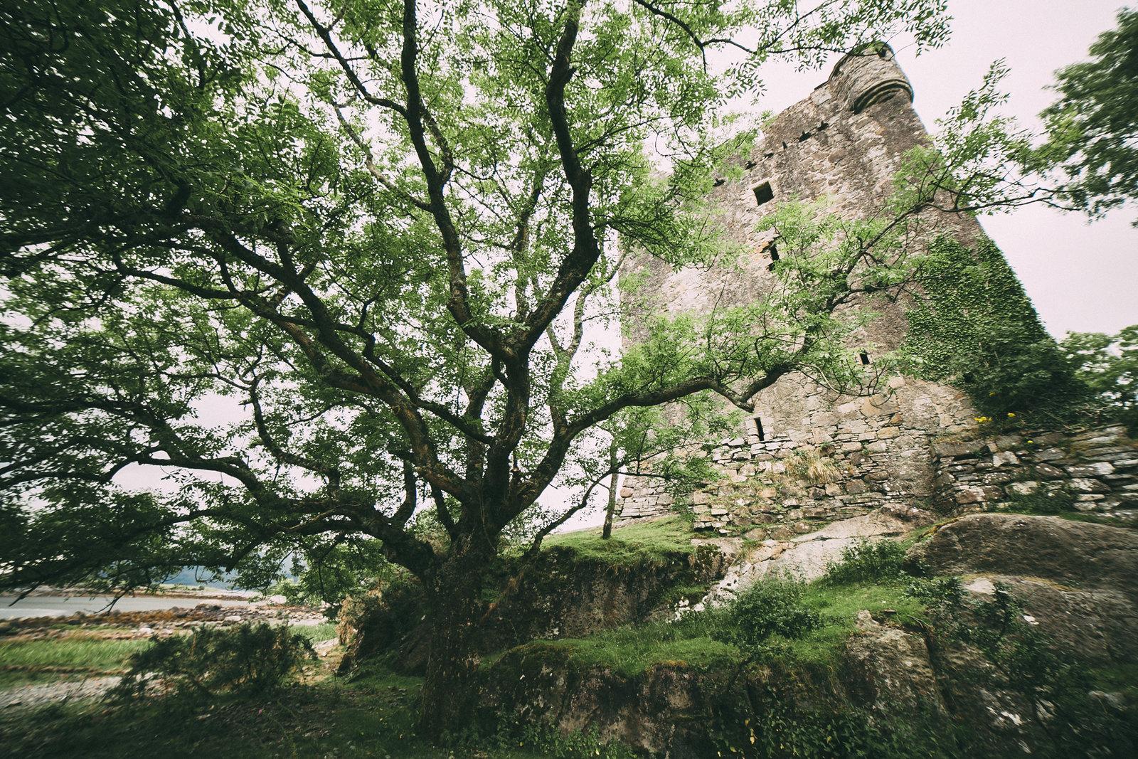 castle moy-6