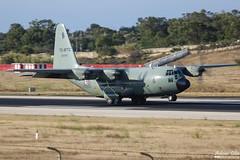 Tunisia Air Force --- Lockheed Martin C-130B Hercules --- TS-MTC