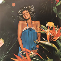 MINNIE RIPERTON:ADVENTURES IN PARADISE(INNER 2)