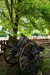 Beaucaire - Le Vieux Mas. Charrette. - Photo of Bellegarde