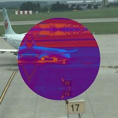 Big and Little Bird Ottawainternationairport airport shape shapes circ
