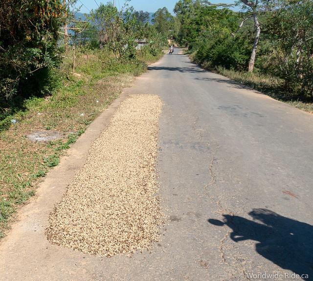Timor-Leste-73