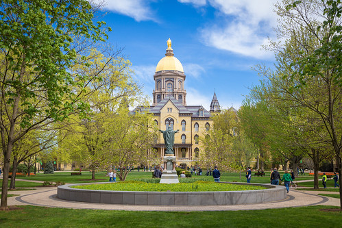 Notre Dame. Photographer Gregory Bozik