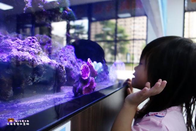 童遊水族館 林口親子館 親子餐廳 童遊 (18).JPG