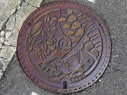 Okutama Tokyo, manhole cover (東京都奥多摩町のマンホール)