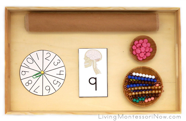 Tray for Brain Addition with Miniature Brains and Bead Bars