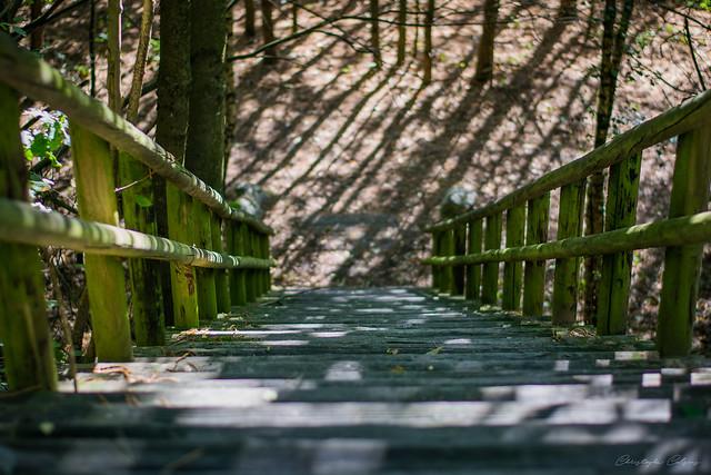 Stairway, Nikon D3300, AF Nikkor 50mm f/1.8