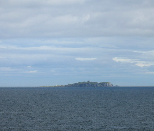 Isle of May, Firth of Forth