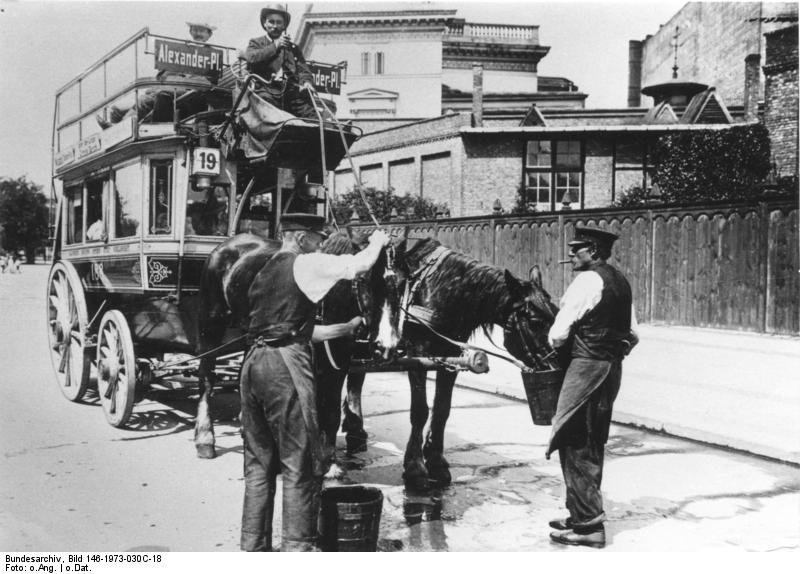 Horse being scrubbed-down while hitched to a horse-bus in Berlin in the early 20th century.