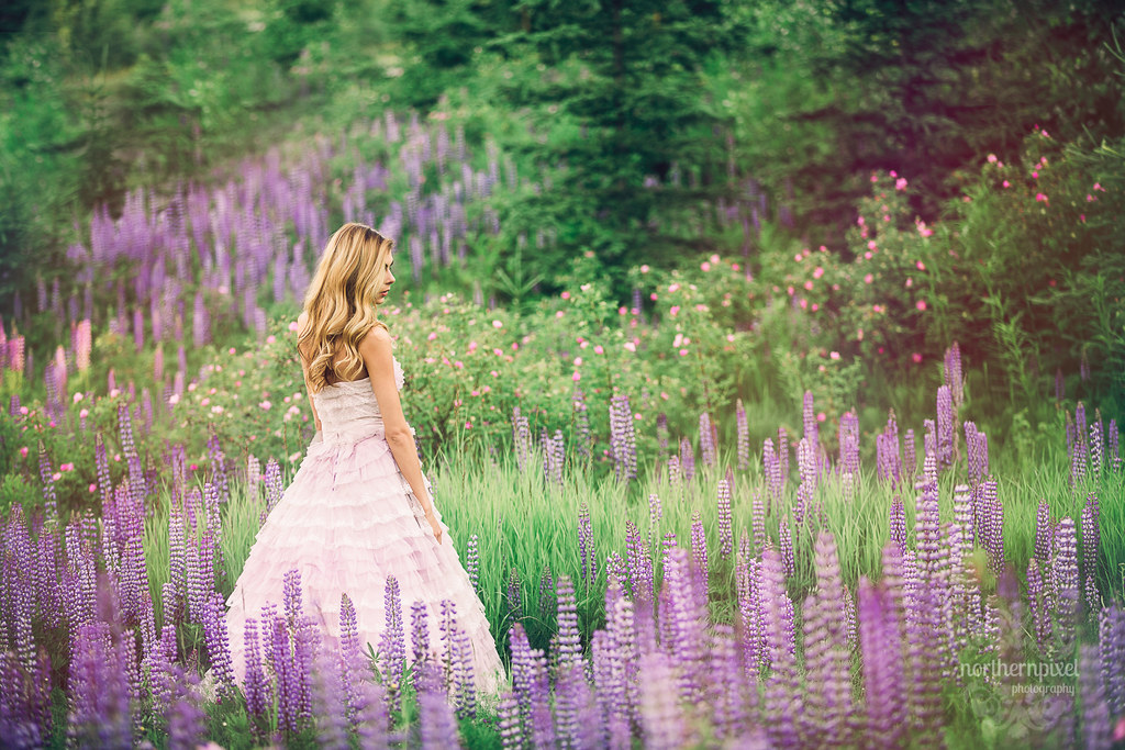 Wildflower Photo Session, Prince George
