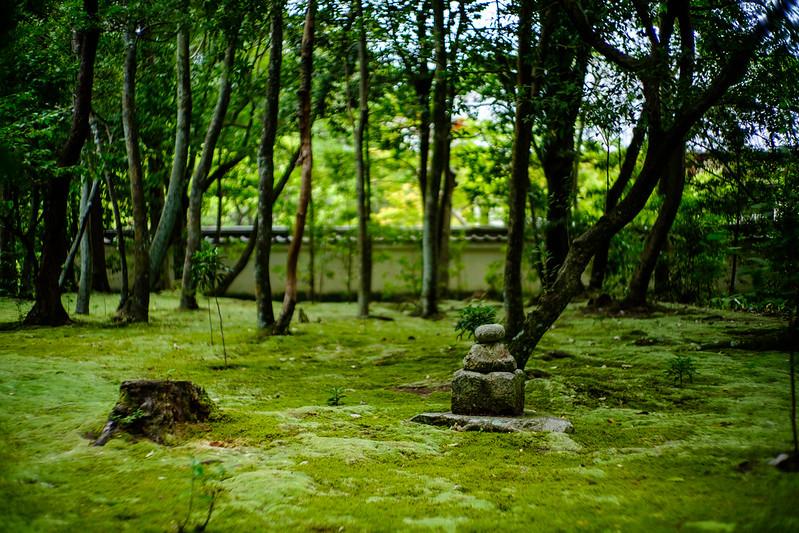 The garden of Akishino-temple