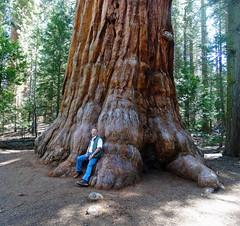 Lean on Me, Sequoia NP 5-18