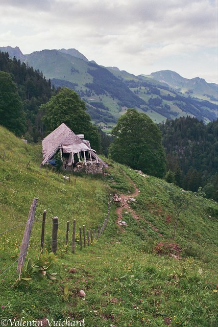 SF__8A_00033 - Bonaudon d'en Bas, Alpine pasture farm - Switzerland