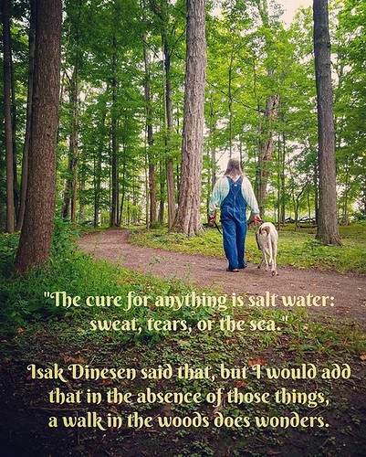 Addendum to a favorite quote of mine. #quote #KnoxFarm #eastaurora #wny #summer #trees #nature #hiking #Cane #dogsofinstagram #greyhound #greyhoundsofinstagram #overalls #dungarees #biboveralls #vintage #dickiesworkwear #denim #bluedenim #denimoveralls #o