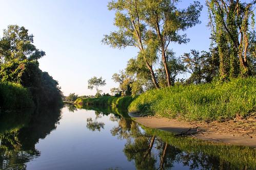 Río Arriba (10)