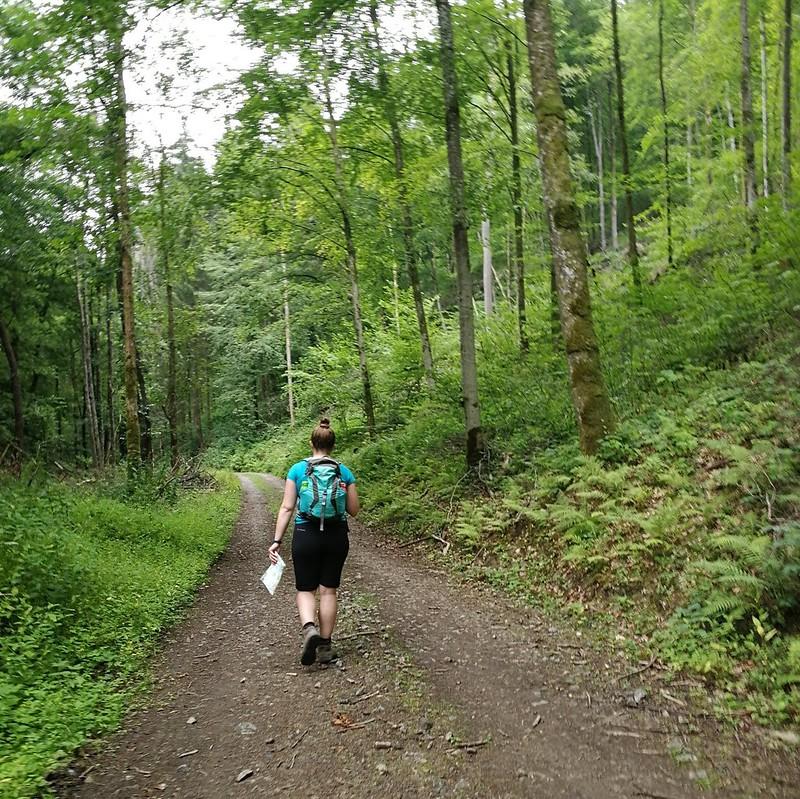 Ardennen wandeling