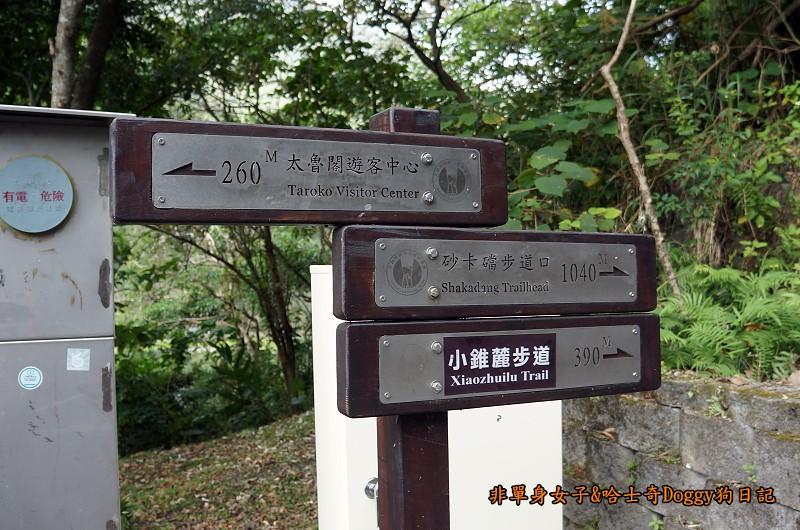 花蓮太魯閣國家公園05