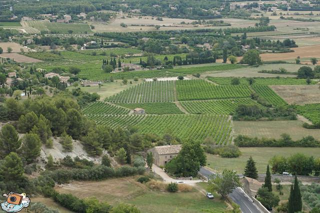 義法13日(Abbaye Notre-Dame de Sénanque)