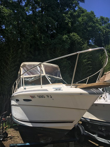 1984 Sea Ray Boats Amberjack Series 245