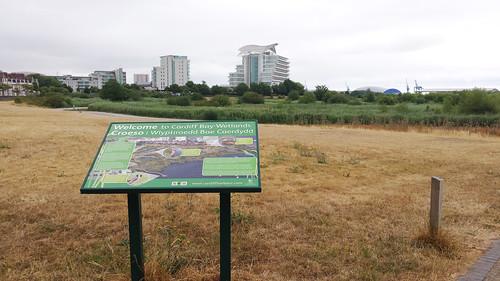 Wetlands, Cardiff Bay