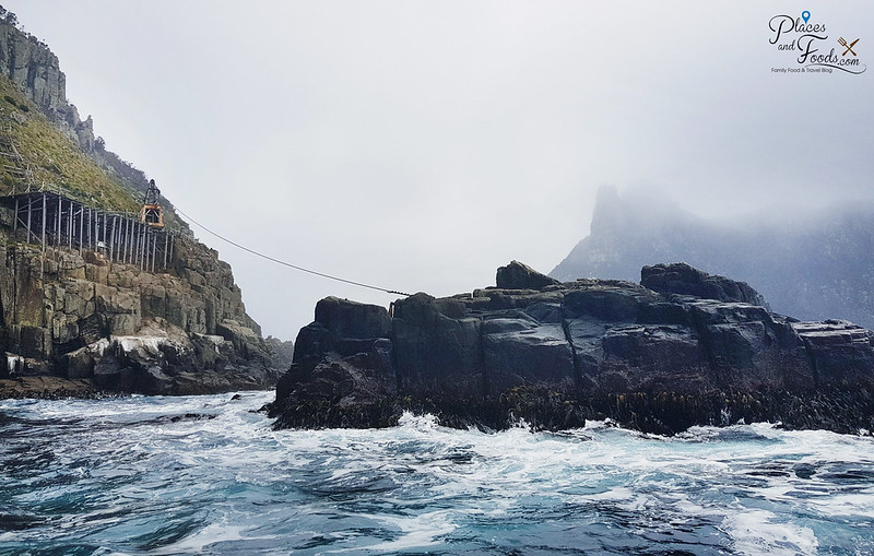 tasman island zipline