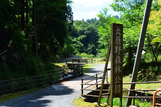 大原野森林公園