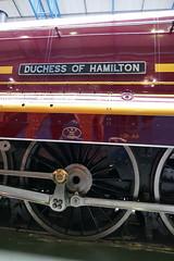 The Duchess. . .