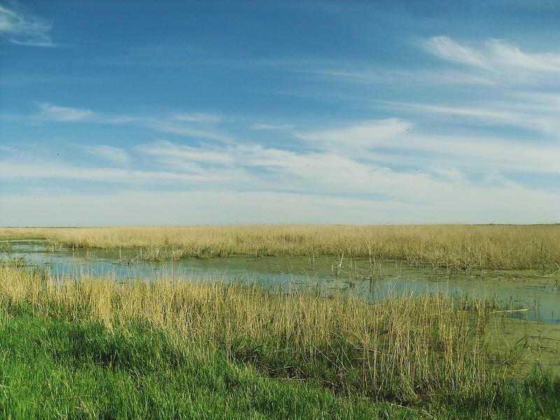 Безымянное озеро.
