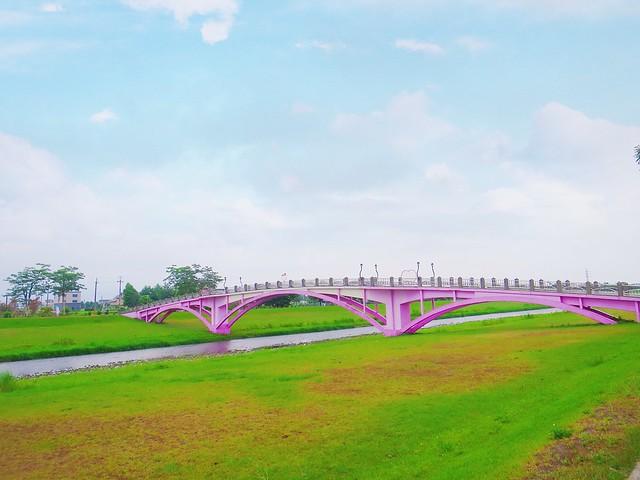 安農溪分洪堰風景區 (15)