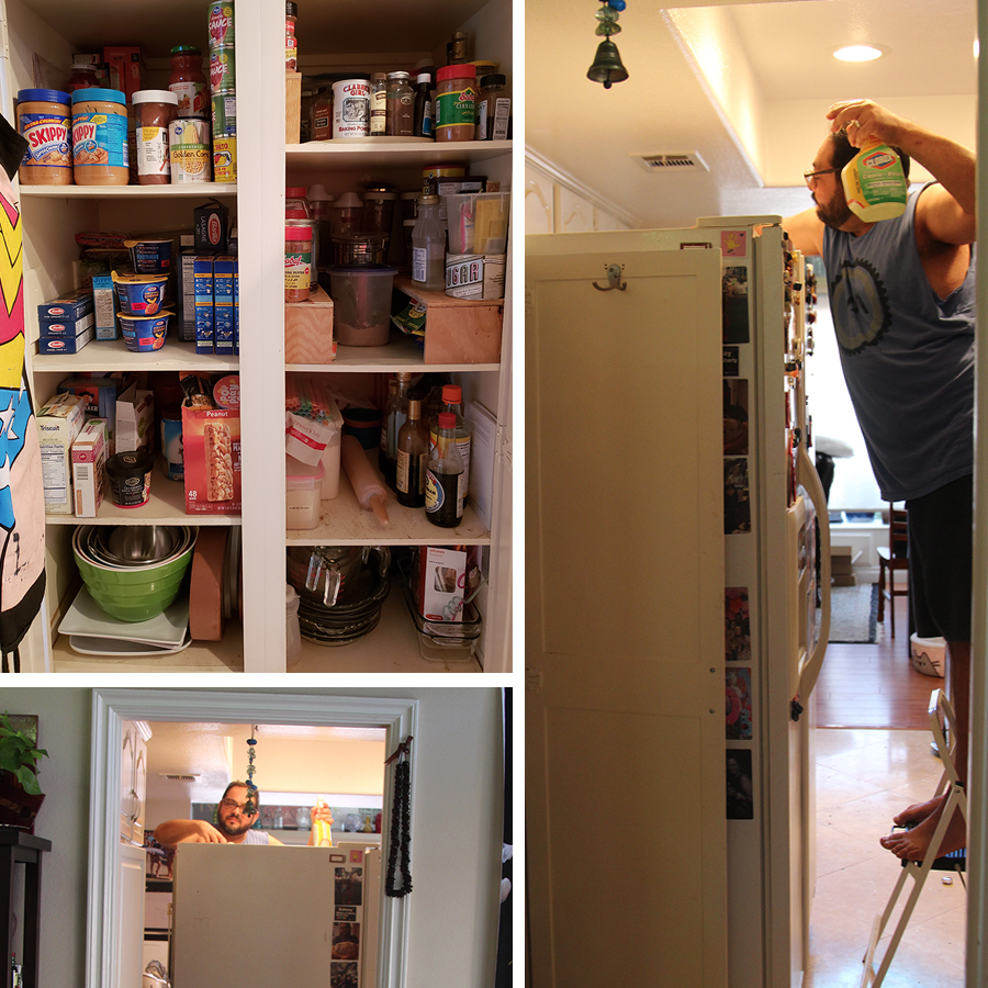 ants-in-summer-mean-pantry-reorganization