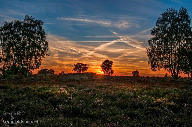 Sunset in Holland