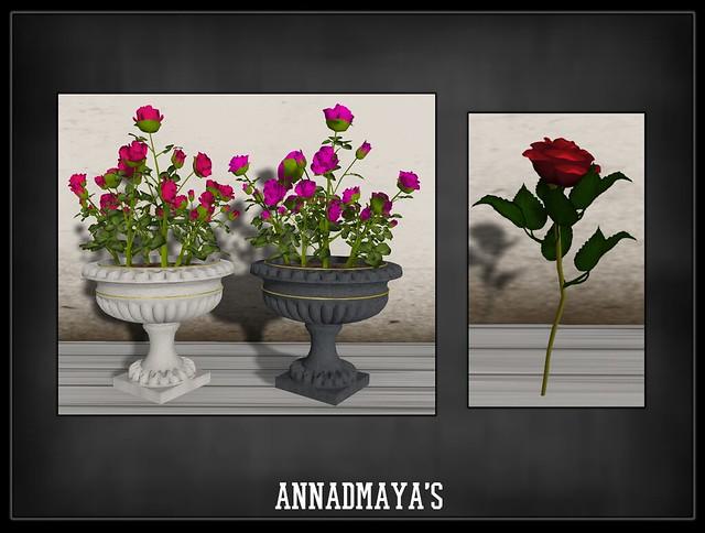 annadmayas3
