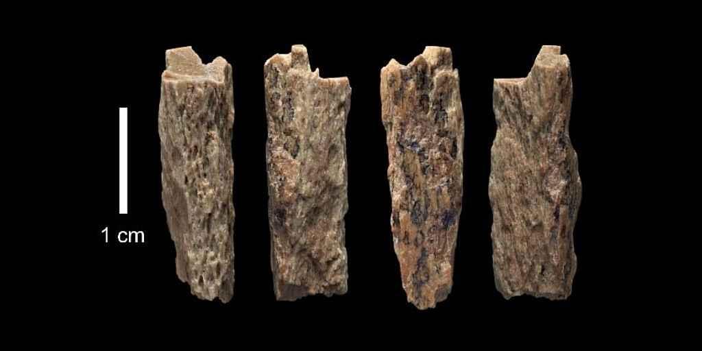Mère néandertalienne et père dénisoviens