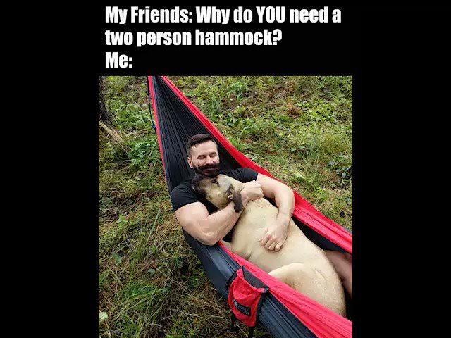 #dogsoftwitter #DogDays #puppies #RelationshipGoals #WednesdayMotivation #hiking #nature #fb #BEARDS #funny https://t.co/Eo0iReaZFP