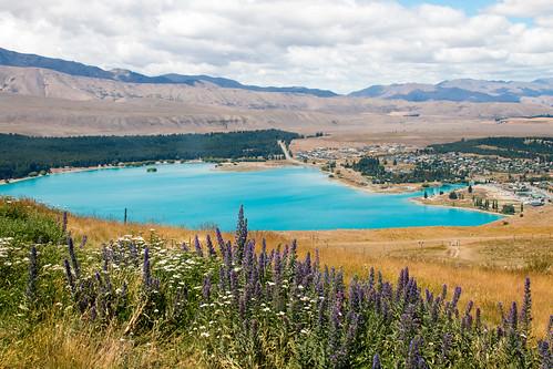 Lake-Tekapo-Observatory-View