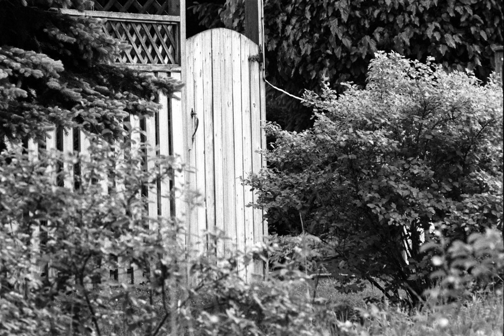 The Secret Garden Door | A privacy door leads into the green