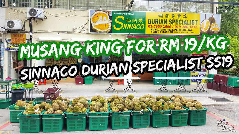 musang king sinnaco