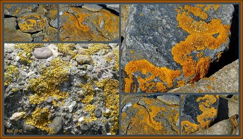 Geschmückte Steine