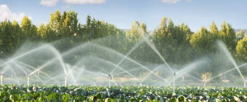 Alimentare cu apa